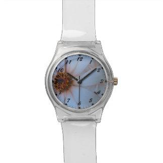 アフリカデイジーI 腕時計