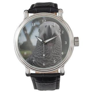 アフリカ灰色のオウムの黒の革バンドの腕時計 腕時計