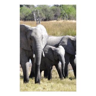 アフリカ象の群れ 便箋