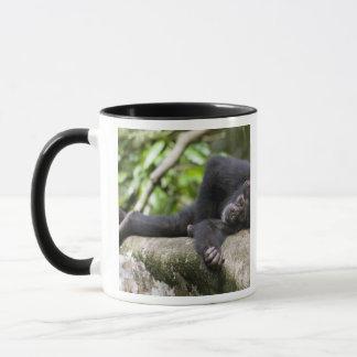 アフリカ、ウガンダの若いKibaleの森林予備 マグカップ