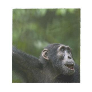 アフリカ、ウガンダのKibaleの森林予備、ポートレート ノートパッド
