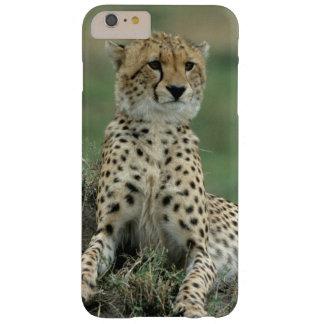 アフリカ、ケニヤのチータ BARELY THERE iPhone 6 PLUS ケース