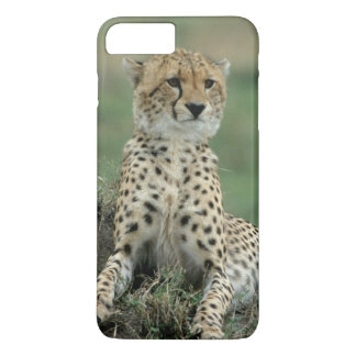 アフリカ、ケニヤのチータ iPhone 8 PLUS/7 PLUSケース