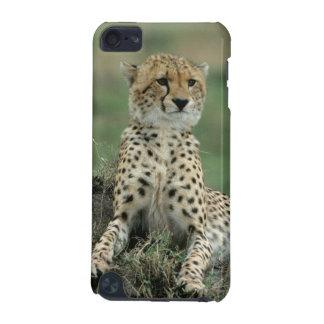 アフリカ、ケニヤのチータ iPod TOUCH 5G ケース
