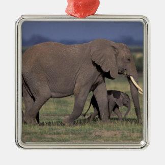 アフリカ、ケニヤのAmboseliの国立公園。 アフリカ人4 メタルオーナメント