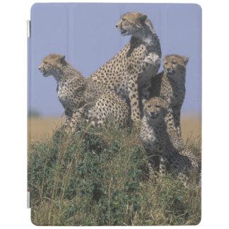 アフリカ、ケニヤ、マサイ族のマラのゲームの予備、大人4 iPadスマートカバー