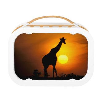 アフリカ、ケニヤ、マサイ語マラ。 キリン(キリン ランチボックス