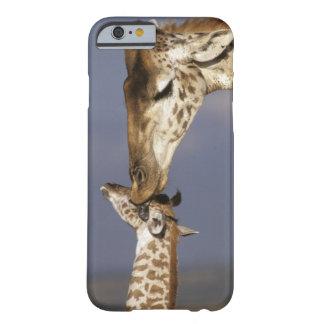 アフリカ、ケニヤ、マサイ語マラ。 キリン(キリン BARELY THERE iPhone 6 ケース
