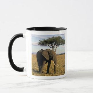アフリカ、ケニヤ、Maasaiマラ。 のelehpant マグカップ