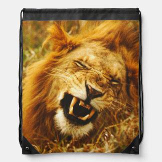 アフリカ、ケニヤ、Maasaiマラ。 オスのライオン。 野生 ナップサック