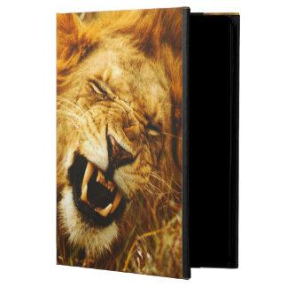 アフリカ、ケニヤ、Maasaiマラ。 オスのライオン。 野生 iPad Airケース