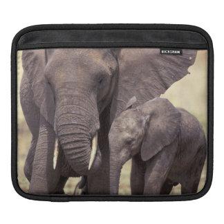 アフリカ、タンザニアのTarangireの国立公園。 2 iPadスリーブ