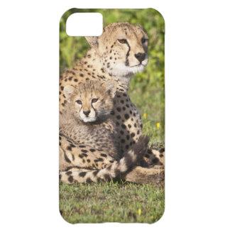 アフリカ。 タンザニア。 チータの母および幼いこども2 iPhone5Cケース