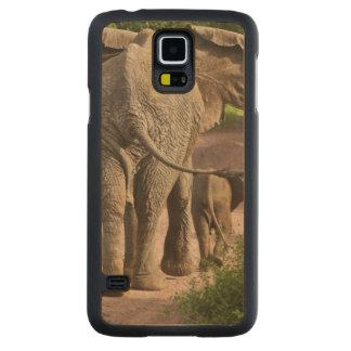 アフリカ。 タンザニア。 象の母そして子牛の CarvedメープルGalaxy S5スリムケース