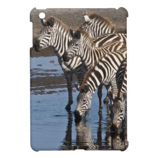 アフリカ。 タンザニア。 Ndutuで飲んでいるシマウマ iPad Miniケース