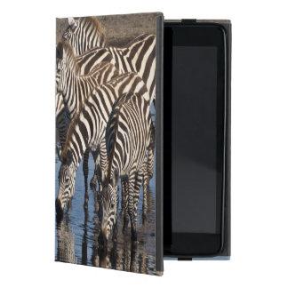 アフリカ。 タンザニア。 Ndutuで飲んでいるシマウマ iPad Mini ケース