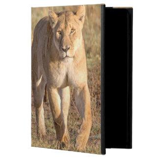 アフリカ、タンザニア、Serengeti。 ライオンおよび雌ジシ iPad Airケース
