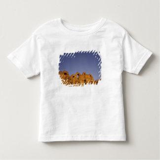 アフリカ、チュニジア、El Jem。 ローマの台なし トドラーTシャツ