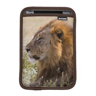 アフリカ、ナミビアのEtoshaの国立公園2 iPad Miniスリーブ