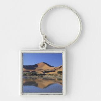 アフリカ、ナミビアのNamibの国立公園、Sossusvlei 2 キーホルダー