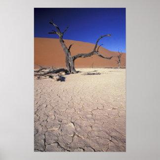 アフリカ、ナミビアのSossusvleiの地域。 砂丘 ポスター