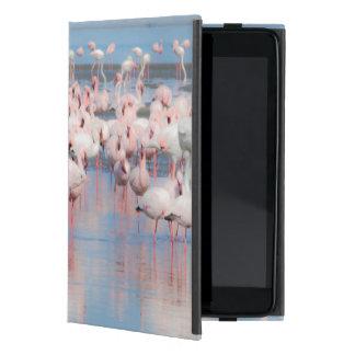アフリカ、ナミビアのWalvis湾 iPad Mini ケース