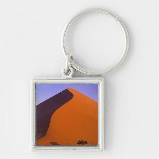 アフリカ、ナミビア、Namib NP、Sossusvleiの砂 キーホルダー
