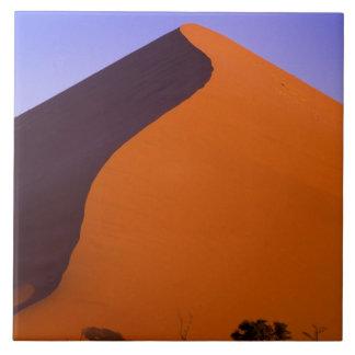 アフリカ、ナミビア、Namib NP、Sossusvleiの砂 タイル