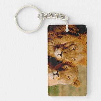 アフリカ、ナミビア、Okonjima。 ライオン及び雌ジシ キーホルダー