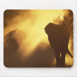 アフリカ、ボツワナのChobeの国立公園、象 マウスパッド
