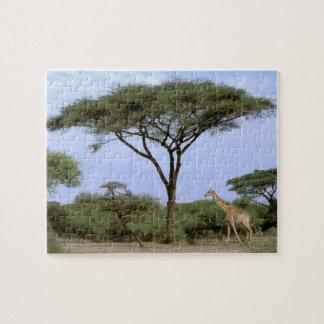 アフリカ、ボツワナのOkavangoのデルタ。 南 ジグソーパズル