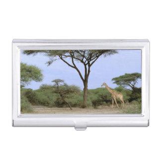 アフリカ、ボツワナのOkavangoのデルタ。 南 名刺入れ
