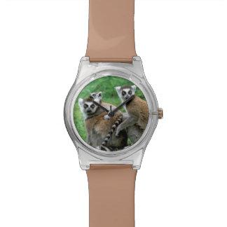 アフリカ、マダガスカル、アンタナナリボ、Tsimbazaza 腕時計