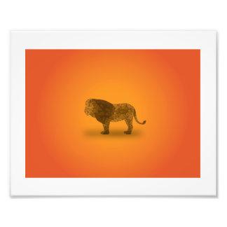 アフリカ-ライオン フォトプリント