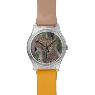 アフリカ、南アフリカ共和国のPhindaジャム。 チータ 腕時計