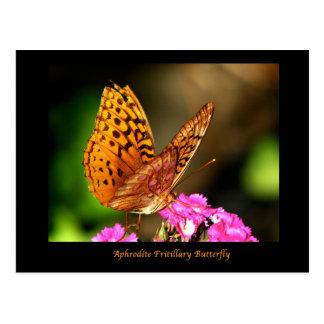 アフロディーテのFrittilaryの蝶 ポストカード