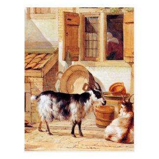 アブラハムvan Strij著ヤードの2頭のヤギ ポストカード