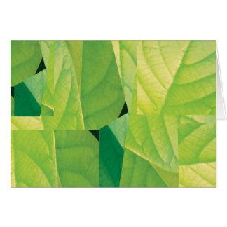 アボカドの葉のメッセージカード カード