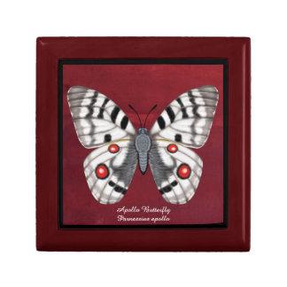 アポロ蝶 ギフトボックス