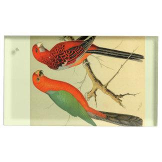 アマゾンのカラフルな鳥: 1878年の絵 テーブルカードホルダー