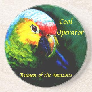 アマゾンの、ビーチ熱帯、オウム島 コースター