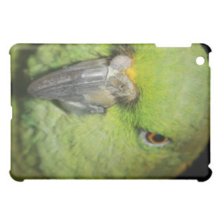 アマゾンオウムのIpadの黄色いNaped箱 iPad Miniケース