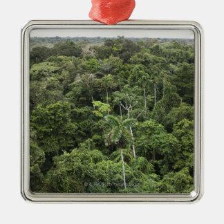 アマゾン熱帯雨林の空中写真 メタルオーナメント
