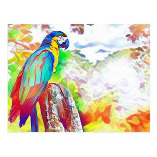 アマゾン鳥 ポストカード