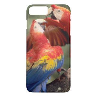 アマゾン、ブラジル。 組の深紅のコンゴウインコ(Ara iPhone 8 Plus/7 Plusケース