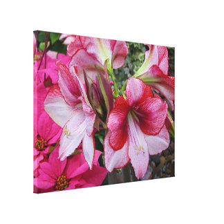アマリリスおよびポインセチアの赤い休日の花 キャンバスプリント