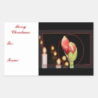 アマリリスのクリスマス 長方形シール