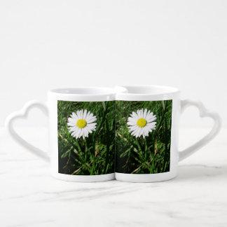 アマリリスの花の花びらの破烈 ペアカップ