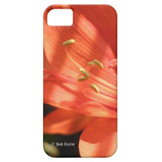 アマリリス01のiPhone 5 iPhone SE/5/5s ケース