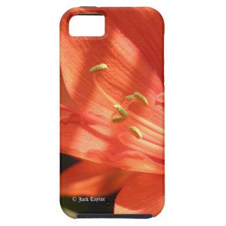 アマリリス01のVibeのiPhone 5 iPhone SE/5/5s ケース